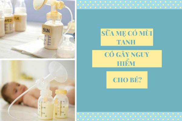 Cách làm sữa mẹ không bị tanh, Cách làm sữa mẹ thơm, Cách làm sữa mẹ thơm và đặc, Cách khử mùi tanh của sữa mẹ trữ đông, Cách chữa sữa mẹ bị hôi